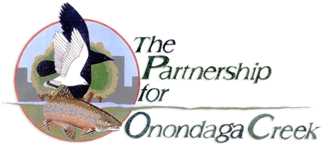 Partnership for Onondaga Creek